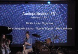 Set 4 Audiopollination 51